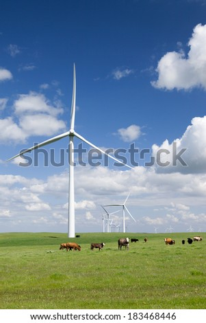 Stark white power generating wind turbines, under Spring blue sky, behind a field of green pasture, range cattle, California.