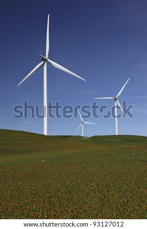 Stark white power generating wind turbines, under Spring blue sky, behind a field of wildflowers, California.
