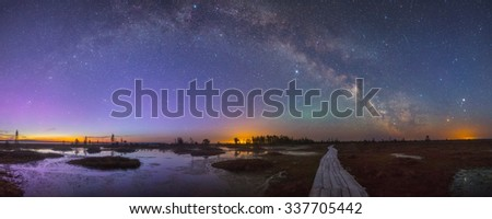 Starry night at a swamp - stock photo