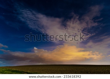 Starry night during summer in fields in country