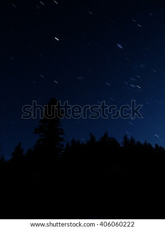 Stars Out at night black sky pine trees silhouette - stock photo