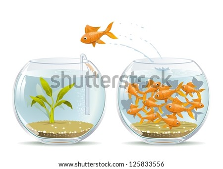 Start of a New Life. Illustration of fish jumping out of the crowded aquarium into a new life. - stock photo