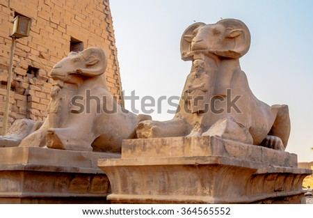 Statues at the Temple of Karnak in Luxor Egypt