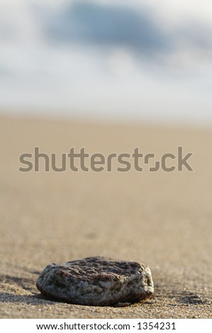 Stay at sea - stock photo