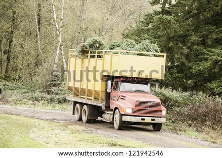 STAYTON, OR - NOV 20: A truck leaves with fresh cut Christmas trees near Stayton, Oregon, USA on November 20, 2011. Oregon harvests more than 6 million Christmas trees annually. - stock photo