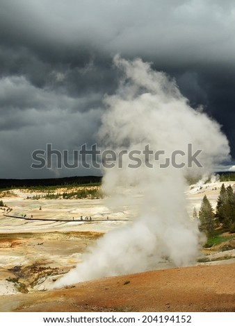 steam vent in the porcelain basin at Norris   geyser basin in yellowstone   National park, Wyoming - stock photo