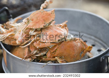 steamed crab in pot - stock photo