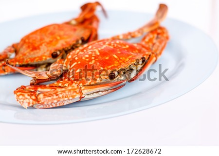 Steamed crab on white background - stock photo
