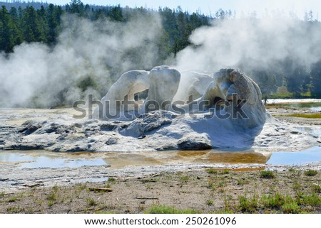 steaming Grotto Geyser in Upper Geyser basin of Yellowstone National Park, Wyoming - stock photo
