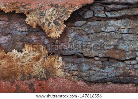 Steel pipe corrosion  - stock photo