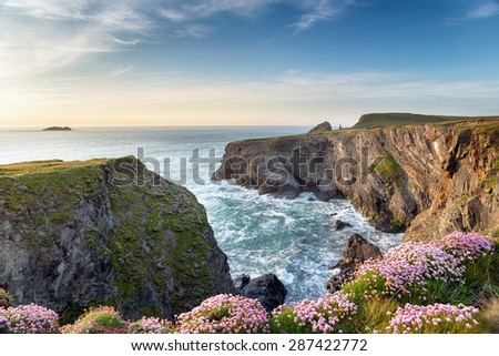 Steep cliffs and wild Thrift in flower at Longcarrow Cove on the north coast of Cornwall - stock photo