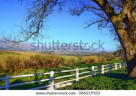 Stellenbosch field, South Africa - stock photo