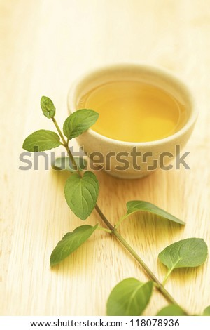 Stem of plant and cup of tea