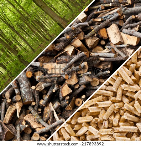 Steps of industrial production for wooden pellets. - stock photo