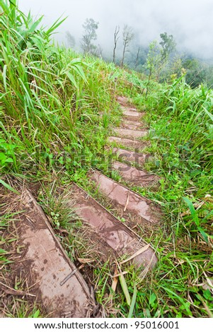 Steps on The mountain at Phu Soi Dao National Park, Uttaradit, Thailand