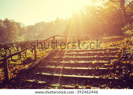 Steps, Start of a Hiking Trail with the Morning Sun Coming Up - stock photo
