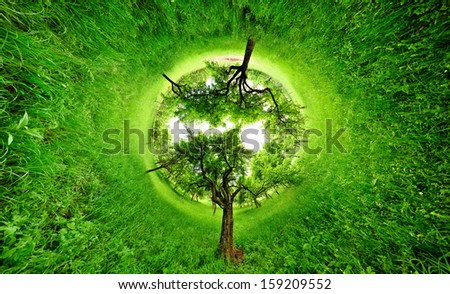 Stereographic projection of a green field with trees. 360 degree panorama. Tunnel panorama. - stock photo