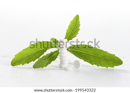 Stevia - plant stevia rebaudiana, green leaves and sweetening tablets  - stock photo