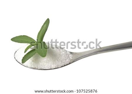 stevia rebaudiana  on a teaspoon - stock photo