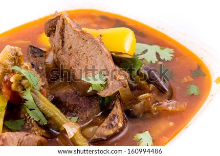 Stewed meat with a broth in a white plate close up - stock photo