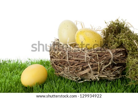 Still life arrangement of natural and dyed traditional Easter Eggs in a neat straw nest with moss on green grass against a white background with copy space - stock photo