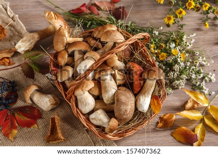 Still life. Flowers, mushrooms / studio photography of eatable mushrooms in wicker basket  - stock photo