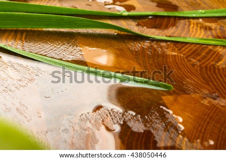 still life - green garlic on wooden Board