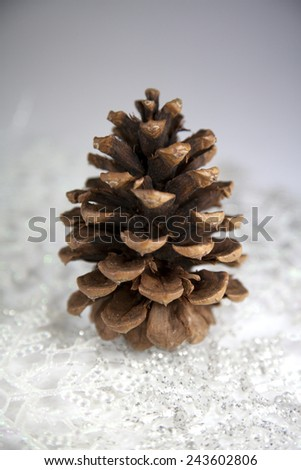 Still life of a pine cone with snowflakes
