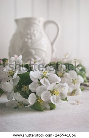 Still life of apple blossom flowers with jug in background - stock photo