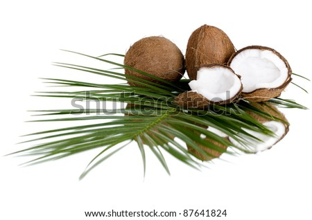 still-life of  coconut with  olive-branch on white background, isolated