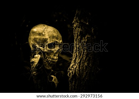 still life of skull and flowers  on dried tree