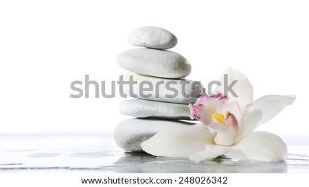 Still life of spa stones on wet glossy surface isolated on white - stock photo