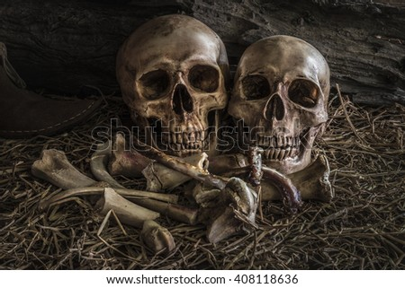 still life painting photography with couple human skull on hay and animal bones in barn background, vintage and dark tone for horror halloween - stock photo
