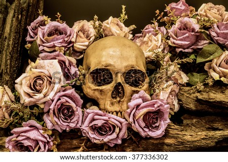 still life painting photography with human skull and roses background, love concept, grunge, vintage and dark tone for halloween - stock photo
