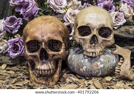 still life photography with couple human skull on dried leaves with roses and timber background, love concept, grunge, vintage and dark tone for horror halloween - stock photo