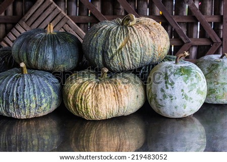 Still life pumpkins and winter melon with wood background - stock photo