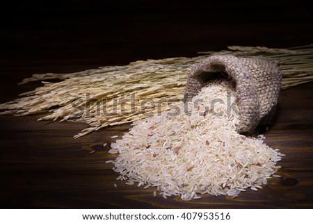 Still life rice ears of corn on the wooden floor - stock photo