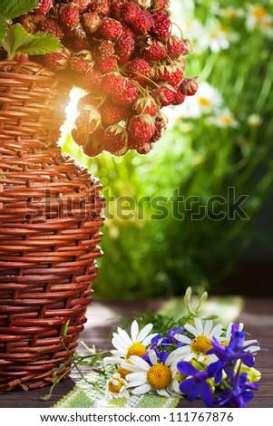 still life. ripe wild strawberries and wildflowers - stock photo