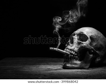 "Still life skull and cigarette people smoke cigarette and get toxin body look like way to die. In the day "" World No Tobacco Day"" please quit or stop smoke for good health. - stock photo"