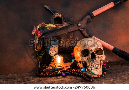 Still life skull with Old Scissors