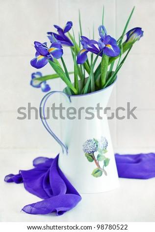 Still life with a beautiful blue irises - stock photo