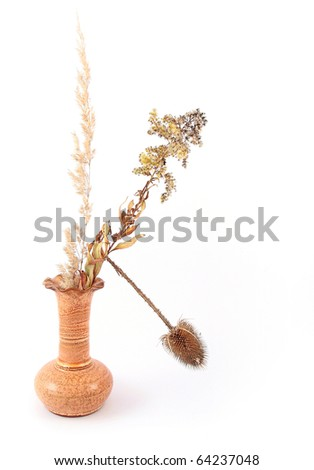 Still life with a dry thistle and dry grass in vase - stock photo