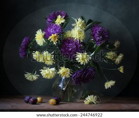 still life with asters and plums - stock photo