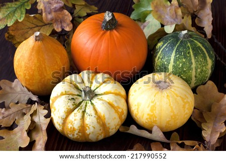 Still life with colorful pumpkins - stock photo