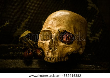 Still life with dried rose and soldier skull