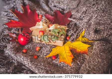 Still life with dry leaves, small red apples and wrapped gift box on a cozy blanket