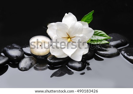 Still life with gardenia with candle with therapy stones