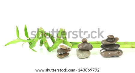 Still life with green bamboo plant and stones, isolated on white - stock photo