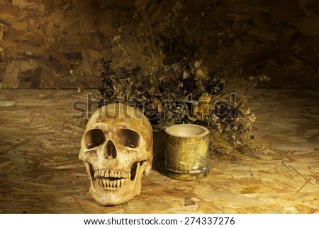 Still life with human skulls on wooden background - stock photo