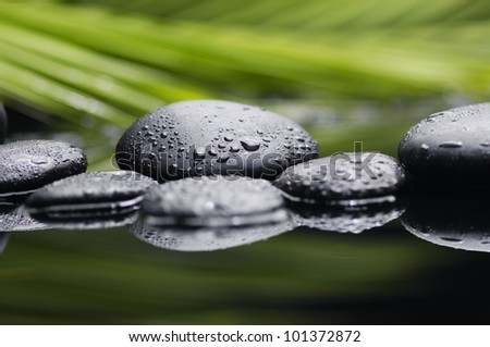 Still life with Leaves of palm with zen pebbles - stock photo